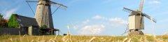 Saaremaa-tuulikud-1000x250.jpg